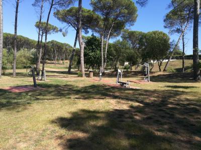 Parque dos Pinheiros Mansos